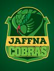 Jaffna Stallions Cricket Team