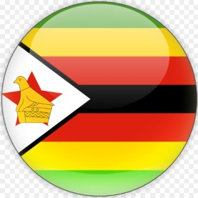 Zimbabwe Cricket Team logo - You will find here Zimbabwe Cricket Team Matches, Schedule, Result, Players, ICC Ranking along with Zimbabwe Cricket Team Match latest News and Photos.