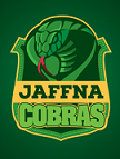 Jaffna Stallions Cricket Team