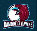 Dambulla Hawks National Cricket Team
